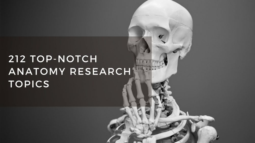 212 Outstanding Anatomy Research Topics And Writing Ideas